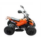 Детский электроквадроцикл VOLTRIX JAGUAR MINI 800