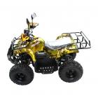 Электроквадроцикл VOLTRIX MUSTANG MAXI 1000